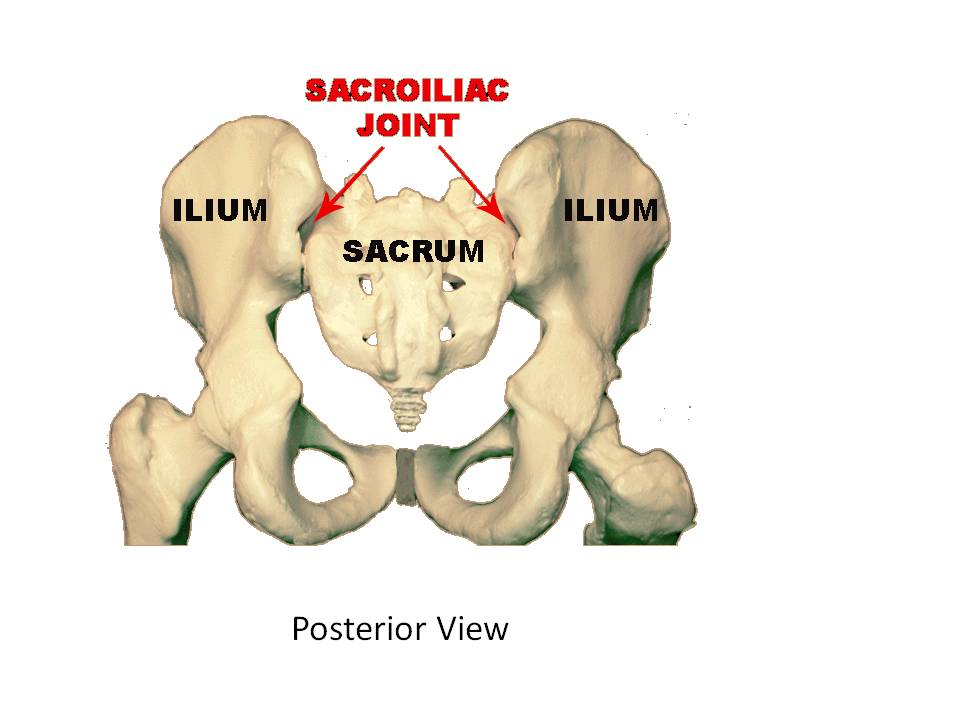 Low back pain and leg pain caused by sacrum and sacral iliac joint dysfunction
